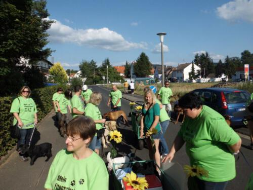 Stadtfest2012 008
