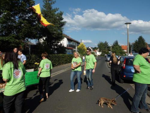 Stadtfest2012 015
