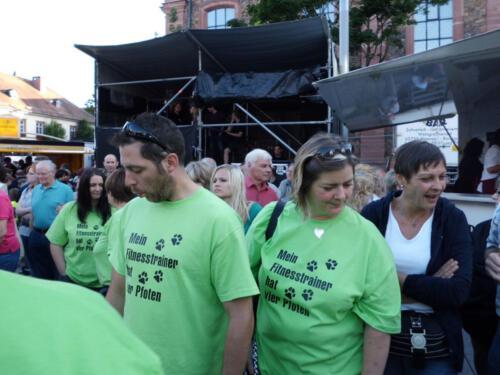 Stadtfest2012 029