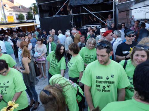 Stadtfest2012 030